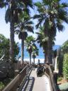 Grandview Steps… lovely Encinitas!