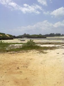 The beach in Watamu, Kenya