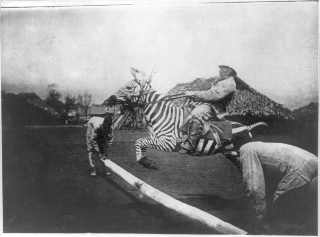 Colonial bastard jumping a tamed zebra in East Africa sometime between 1890 and 1923...
