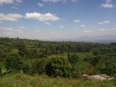 Beautiful view from Marangu village